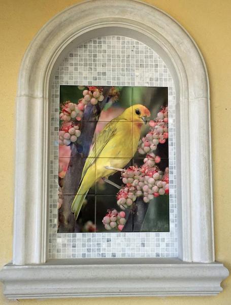 Outdoor Photo Tile Mural Finch